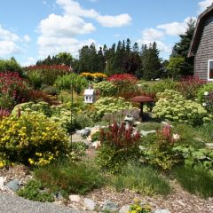 Photo for blog post: How Maintaining Your Landscape Can Save Money and the Environment